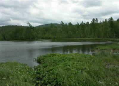 Озеро Дикое Хакасия фото