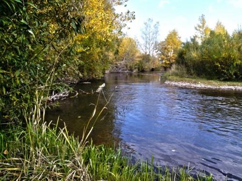 Река Уйбат фото